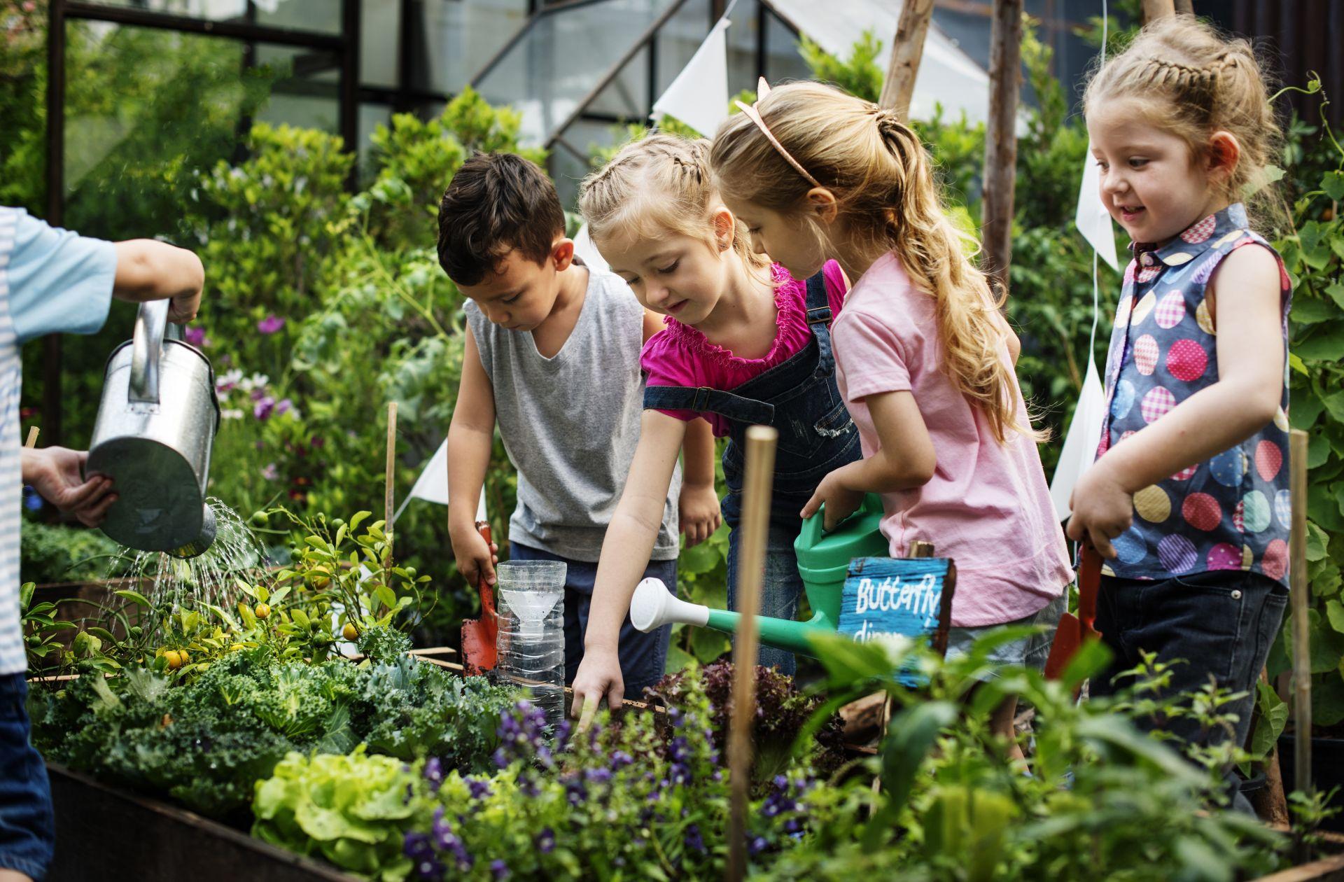 Niños cuidando plantas